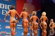 Nordic Pro - 2013
