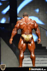 Мистер Олимпия - 2014 (страница 7)