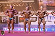 Чемпионат России по бодибилдингу - 2015 (страница 13)