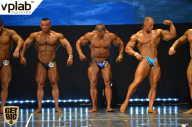 Чемпионат России по бодибилдингу - 2017 (страница 26)