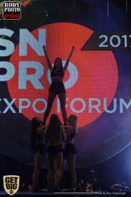 SN PRO EXPO - 2017 (страница 4)