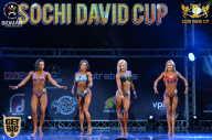 Sochi David Cup - 2017