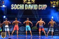 Sochi David Cup - 2017 (страница 2)