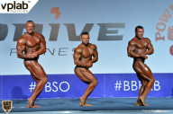 Гран-при России IFBB Elite Pro - 2018 (страница 12)