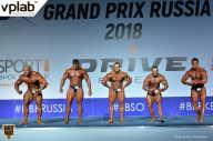 Гран-при России IFBB Elite Pro - 2018 (страница 13)