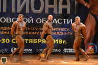 Чемпионат Московской области по бодибилдингу - 2018 (страница 4)