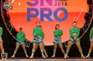 SN PRO EXPO - 2018 (страница 7)