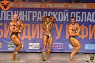 Кубок Ленинградской области по бодибилдингу - 2021 (страница 14)